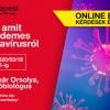 INGYENES előadás - Minden amit tudni érdemes a koronavírusról!