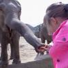 Safari Park nyílt Szadán! Nyitvatartás, cím és jegyárak itt!