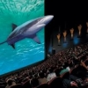 4D mozi Budapesten a Westend City Centerben! Videó itt!