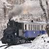 Nosztalgia vasút közlekedik a Széchényi-hegyen!