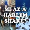 Harlem shake videók!