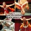Mönche des Shaolin Kung Fu Show 2014 - Jegyek itt!