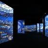 Van Gogh Kiállítás óriás gigantikus képekkel a Vörösmarty téren! Jegyek és videó itt!