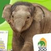 INGYEN látogatható az Állatkert a hétvégén!