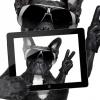 Mindennapi Pszichológia - A selfie pszichológiai kérdései!