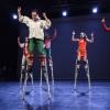 Virtus tánc-cirkusz az ÚJszegedi Szabadtéri Színpadon 2016-ban - Jegyek itt!