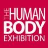 The Human Body - Az Emberi Test kiállítás nyílt Budapesten! Jegyek itt!