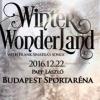 Winter Wonderland - Karácsonyi koncert Sinatra dalokkal az Arénában - Jegyek itt!