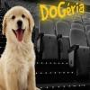 Dogéria 2. - Mozizz a kutyáddal!