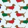 Dogéria 3. - Mozizz a kutyáddal!