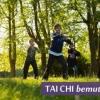 Ingyenes Tai Chi bemutató a Margitszigeten!