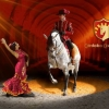 Spanyol Királyi Lovasiskola lovas showja 2017-ben Budapesten az Aréna színpadán! Jegyek itt!