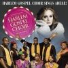 Adele dalaival érkezik Budapestre a Harlem Gospel Choir - Jegyek itt!
