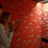 Különleges Valentin napi programok a Csodák Palotájában és Playbarban!