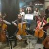 Hangszer simogató és ingyenes koncertek az aluljáróban!