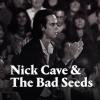 Nick Cave & The Bad Seeds koncert 2021-ben Budapesten az Arénában - Jegyek itt!