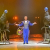 Cirkuszi Világnap - Fókák, kutyák, papgájok és ügyesség versenyek az INGYENES programon!