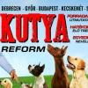 Kutyareform kutya show Nyakas Gáborral 2019-ben Győrben - Jegyek itt!