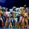 Macskák a BOK csarnokban 2020-ban - Jegyek a Madách színház előadására itt!