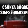 Csúnya Bögre Szépségverseny Budapesten!