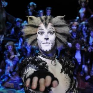 INGYEN lesz látható a Macskák musical!