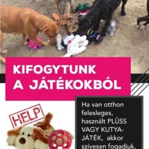 Használt plüss játékokat keresnek kutyusoknak!