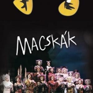 Macskák musical 2018-ban a Budapesti Kongresszusi Központban - Jegyek itt!