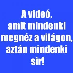 A videó, amit mindenki megnéz a világon, aztán mindenki sír!