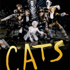 Macskák musical a SYMA csarnokban angolul - Jegyek az eredeti CATS angol előadásra itt!