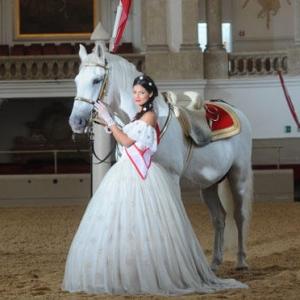 Sissi kedvenc lovasai Budapesten az Arénában - Jegyek itt!