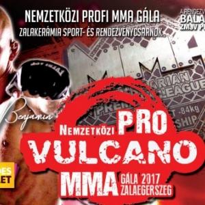 Nemzetközi MMA gála Zalaegerszegen - Jegyek itt!