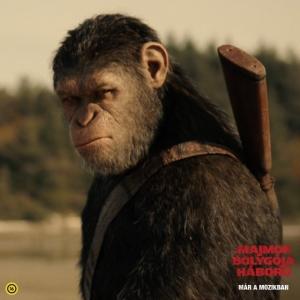 Nyerj exkluzív Majmok bolygója ajándékokat!