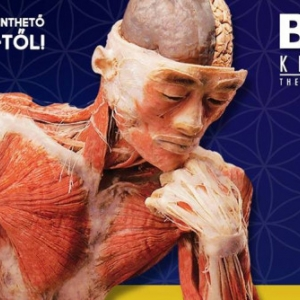 BODY Kiállítás 2018-ban Budapesten! Jegyek itt!