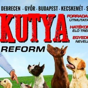 Kutyareform kutya show Nyakas Gáborral 2019-ben Kecskeméten az Agorában - Jegyek itt!