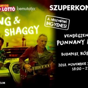 Ingyenes koncertet ad Sting és Shaggy a Hősök terén!